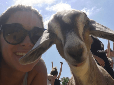Farm Yoga is Coming to Sacramento