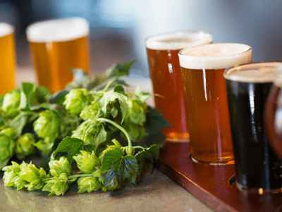 GoatHouse Brewing Company offers a serene tasting experience for visitors to Placer County