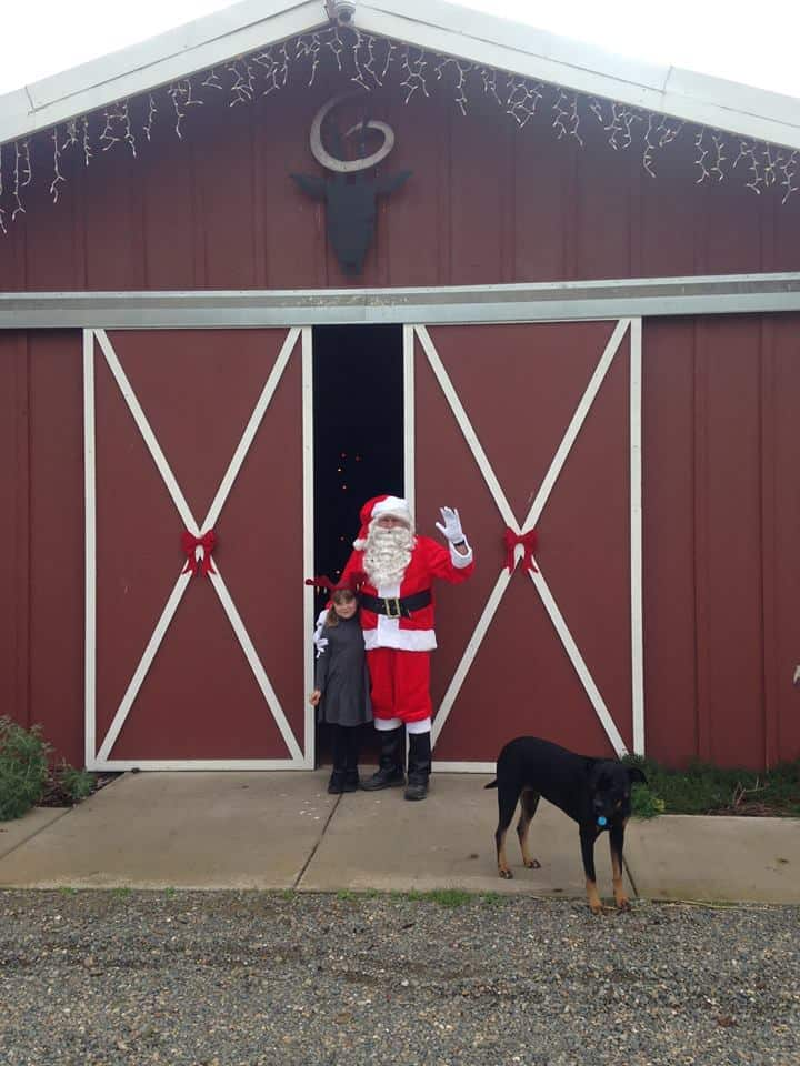 Santa with kid at Goathouse Brewing